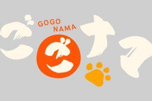 「NHK「ごごナマ」にICB講師上内奈緒が出演! 骨格モデルとして修了生様も生出演♪」